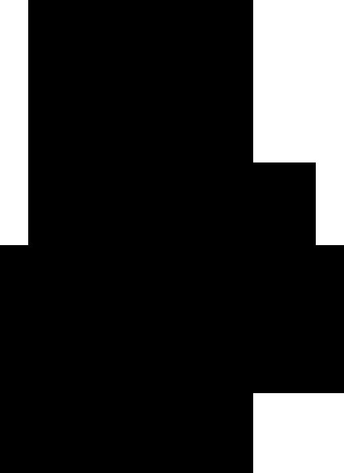 pic-02